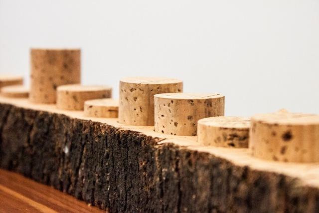 natural cork in bark