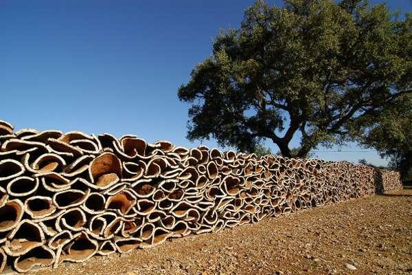 cork-production